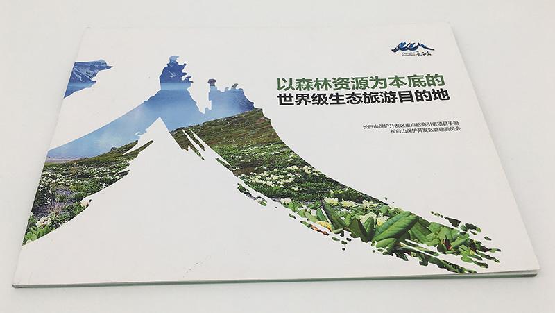 北港工业区快优印产品说明书印刷
