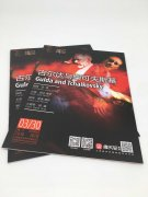云龙产品宣传册印刷